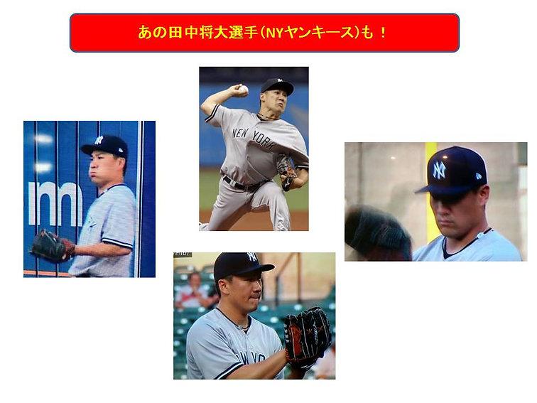 AXFカラーバンド(田中選手).jpg