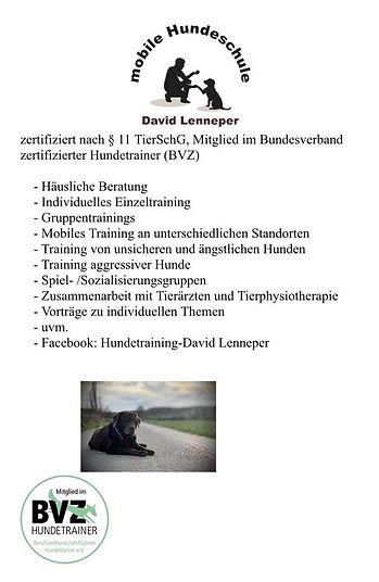 David Lenneper