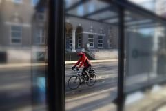 Bike or bus ?