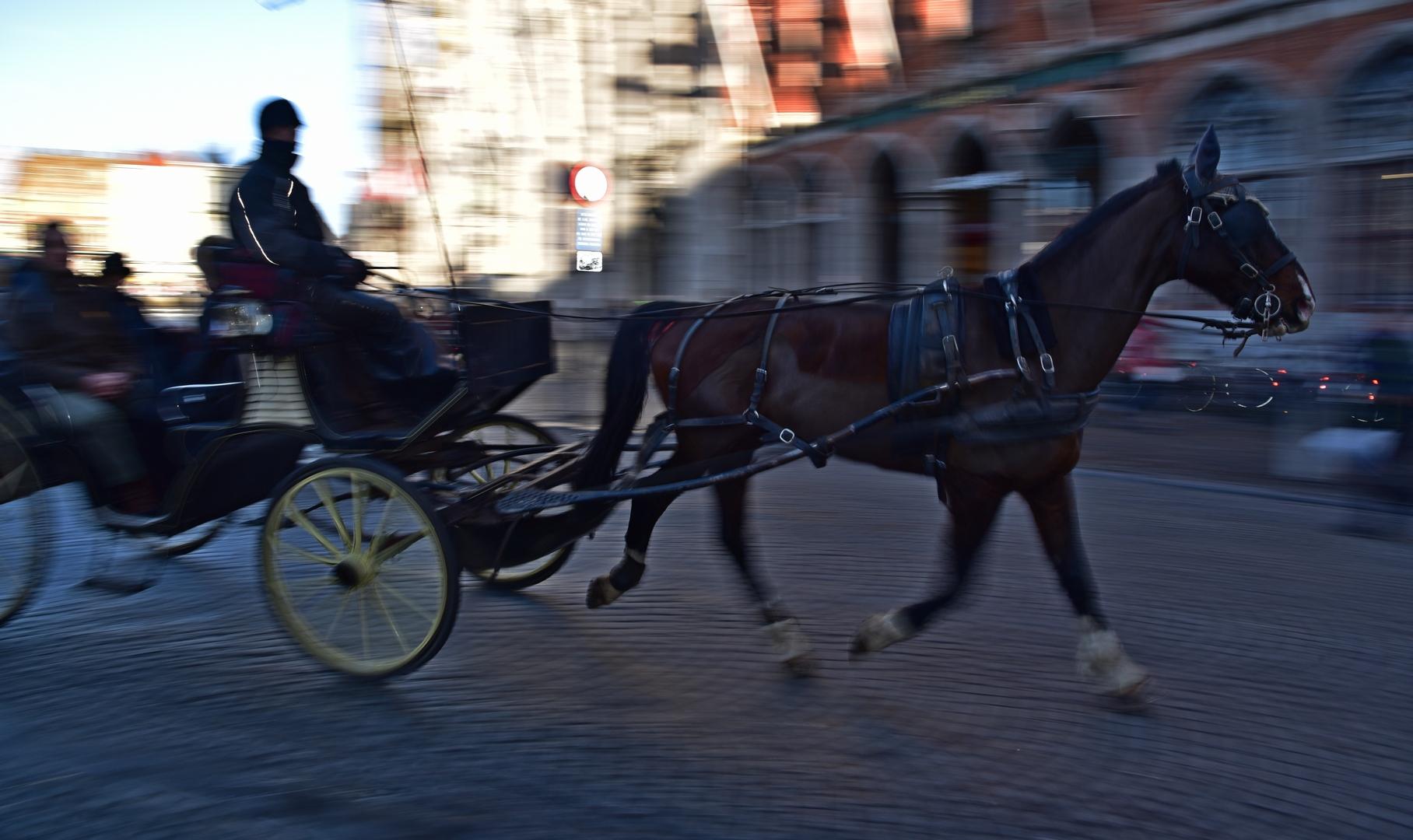 Cheval de courses... en taxi