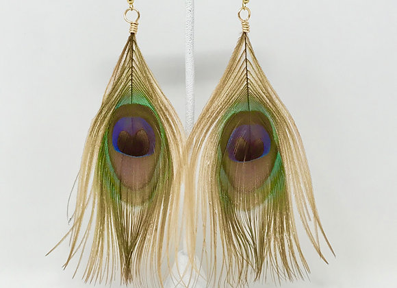 Peacock Feather Neutral