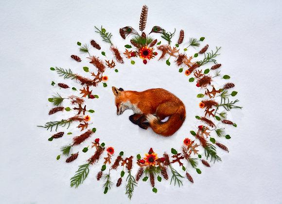 Red Fox Nature Mandala