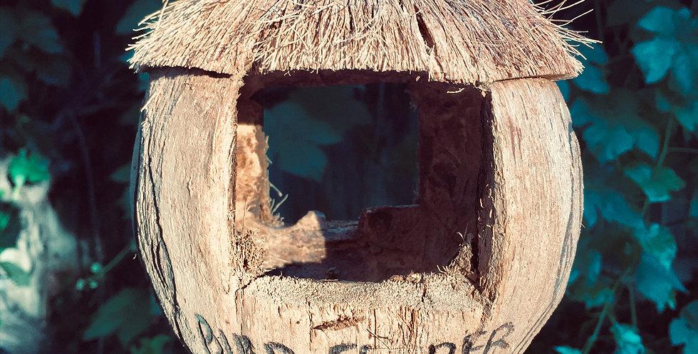 Coconut birdhouse / bird feeder