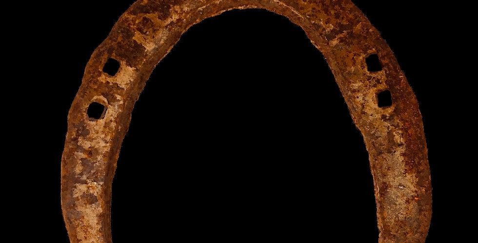 Used Horseshoe