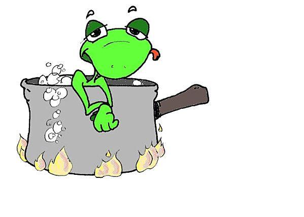 La grenouille qui ne savait pas qu'elle était cuite !