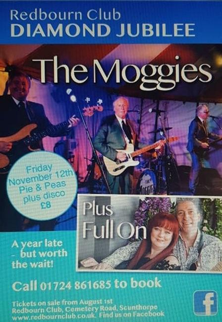 moggies.jpg