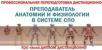 Препод анатомии в СПО.jpg