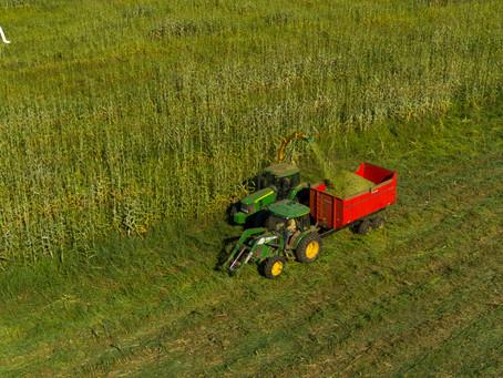 GALU AGROPECUÁRIA promove curso agrícola aos colaboradores