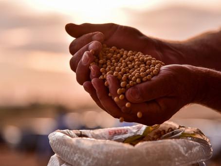 Faturamento do agronegócio deve chegar a R$ 716,6 bilhões em 2020, diz ministério