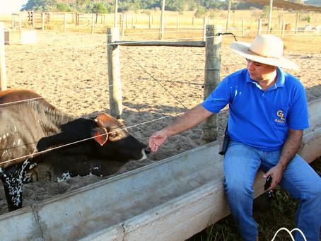 Cursar agronomia e suas oportunidades: Quais as áreas de atuação?