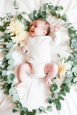 newborn portrait styling
