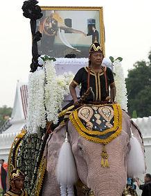 Thailand Elephants Ki_byuh.jpg