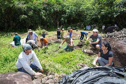 Maunawila Heiau_IUCN World Conservation
