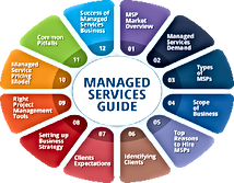 managed-services-business-guide.png