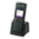 dect-handsets-8262-application-photo-lef