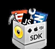 LBS SDK.png