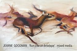JEANNE GOODMAN . Run Like an Antelope.