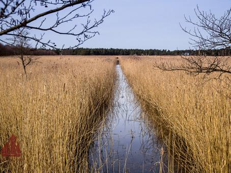 In der kalten Jahreszeit die Ostsee genießen