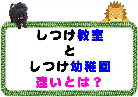 教室と幼稚園の違い.JPG