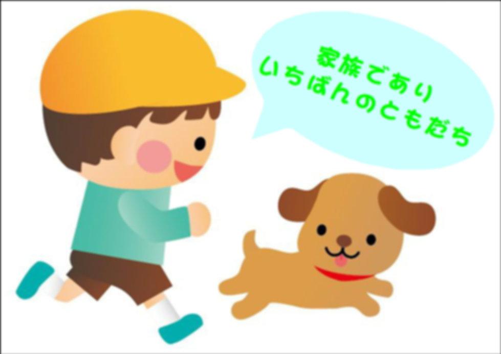 始める時期   犬のしつけ専門店 ワンメイク   日本