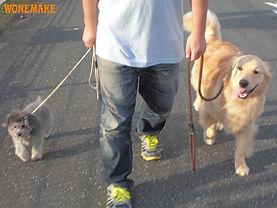 犬の幼稚園 | 犬のしつけ専門店 ワンメイク | 日本