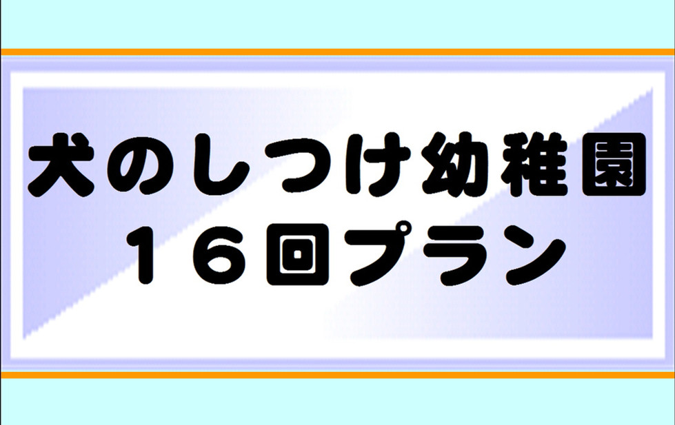 しつけ幼稚園16回プラン.JPG