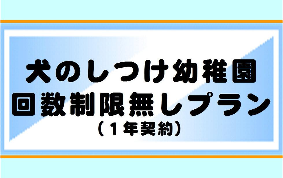 しつけ幼稚園1年契約.JPG
