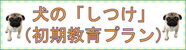 初期教育プランバナー.JPG