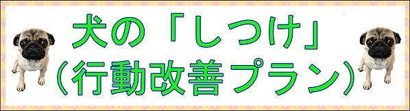行動改善プランバナー.JPG