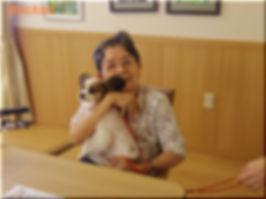 犬のしつけ 木更津 WONEMAKE 子猫販売 ワンメイク 猫カフェ