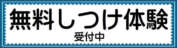無料しつけ体験.JPG