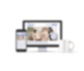 Mockup Web_MNSC.png