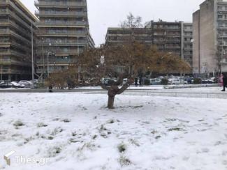 """Καιρός: Θα """"χτυπήσει"""" νέος χιονιάς την Ελλάδα στις αρχές Μαρτίου;"""