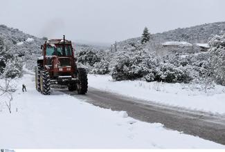 Μαρουσάκης: Πολικό ψύχος και χιόνια σαν τον Μάρτιο του 1987 - Καλλιάνος: «Πιθανώς ψύχος – τέρας στην