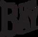 BAYLOGO-BACK-PRINT-290X280s_edited.png