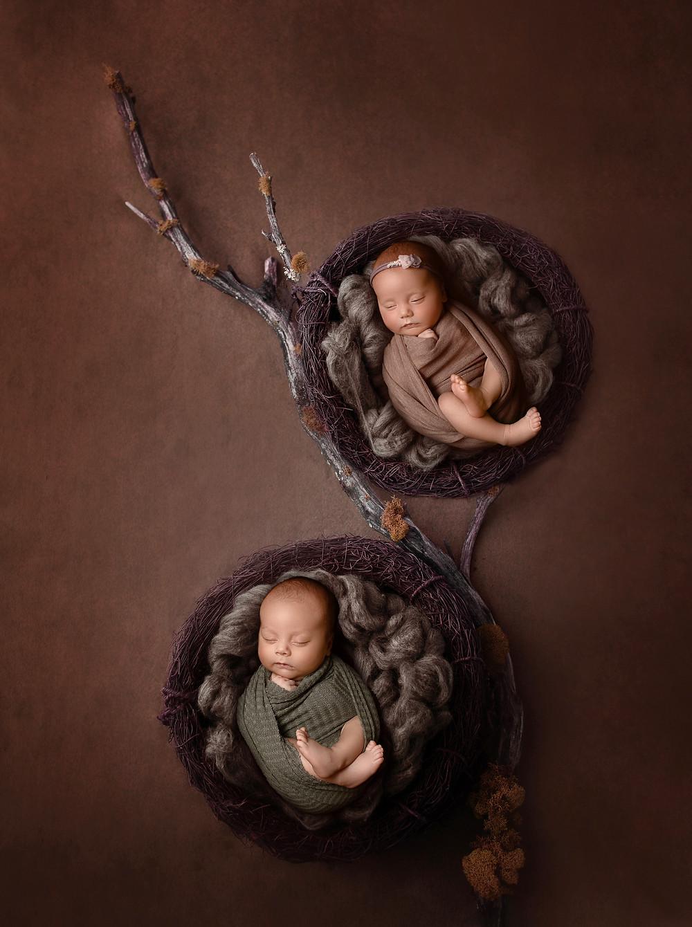 newborn twin composite