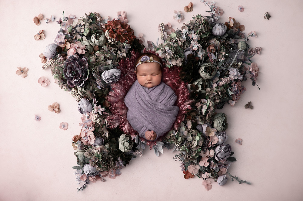 newborn composite floral butterfly