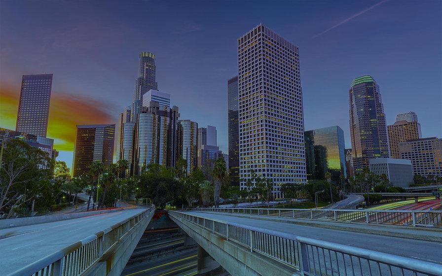 los-angeles-california-business-consulti