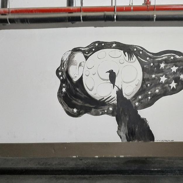מסעות אישה וירח
