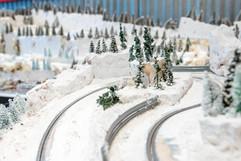 Single Lane Alpine hill-climb track