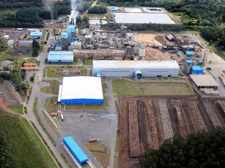 WestRock investe US$ 345 milhões na expansão da fábrica de papel de Três Barras