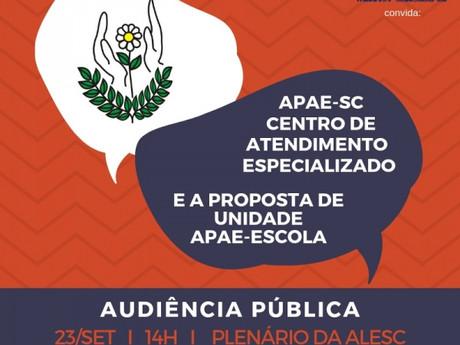 Audiência pública discutirá alternativa de modelo às Apaes em Santa Catarina