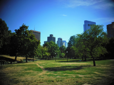Back at the Common, welcome to part 3 of this 4-year adventure! (August 2016)
