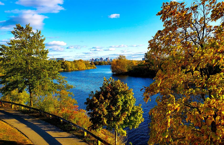 Mystic River Reservation