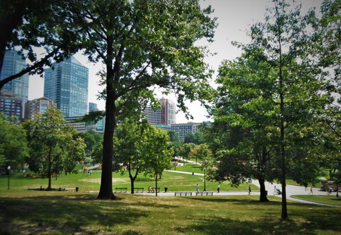 Welcome to the historic New England city of Boston, Massachusetts! From the Boston Common, this is the beginning of a 4-year adventure at this great city. (September 2014)