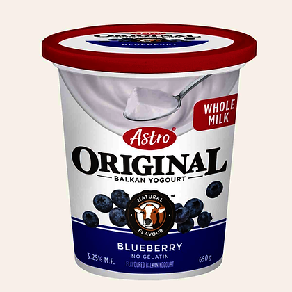 Astro Original Yogurt Blueberry 3.25%