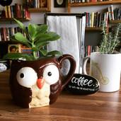 Coffee_ Website.jpg
