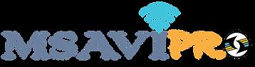 MSAVI Pro Logo.png