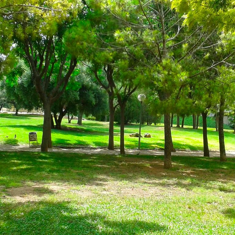 Yoga Urbano en el Parque de la Cuidad (Quinta San Rafael)
