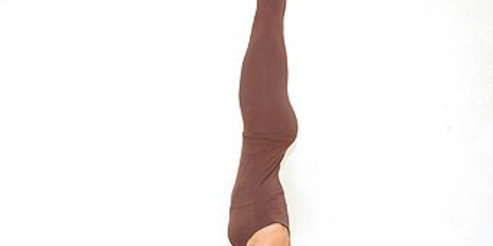 Taller de Yoga, introducción a las posturas invertidas